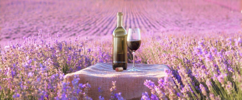 panorama-provence-wine-with-lavender.jpg
